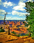 Cavern Digital Art - Crooked Tree at Grand Canyon by Mark and Deidre Ovrebo