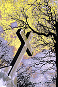 Forgive Prints - Cross and Bare Limbs Amsterdam Holland  Print by John Hanou