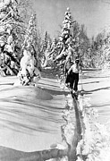 Cross Country Skiing Posters - Cross Country Skiing In Canada Poster by Underwood Archives