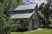 Board And Batten Siding Prints - Cross Creek Barn Print by Lynn Palmer