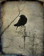 Crow Image Framed Prints - Cross With Crow Framed Print by Gothicolors And Crows