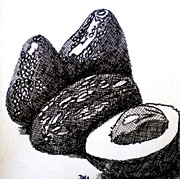 Salad Drawings Prints - Crosshatched Avocados Print by Debi Pople