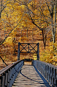 Fall Photographs Posters - Crossing Over Poster by Skip Willits