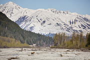 Tim Grams Acrylic Prints - Crossing the Chilkat River Acrylic Print by Tim Grams