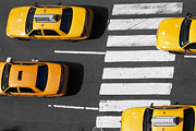Taxi Cab Framed Prints - Crosswalk Framed Print by Dan Holm