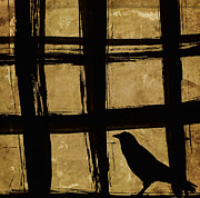 Window Bars Prints - Crow and Golden Light Number 2 Print by Carol Leigh