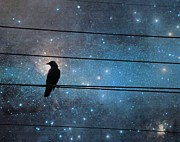 Avian Art Metal Prints - Crow In A Fantasy Night Metal Print by Gothicolors And Crows