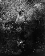 Edward Curtis Prints - Crow Man Reflection Print by The  Vault
