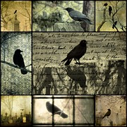 Crow Collage Prints - Crow Merge Print by Gothicolors And Crows