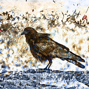 Crow Collage Prints - Crow on Blue Rocks Print by Carol Leigh