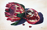 Protea Prints - Crowns of Your Creation Print by Ilse Kleyn
