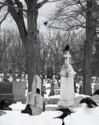 Gothicolors Donna Snyder - Crows in Gothic Winter Wonderland