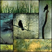 Crow Collage Prints - Crows In Nature Collage Print by Gothicolors And Crows