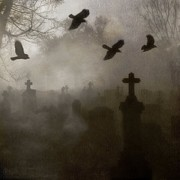 Ravens In Graveyard Prints - Crows On A Eerie Night Print by Gothicolors And Crows