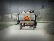Amish Community Photos - Cruising by Steven  Michael