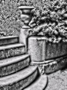 Black White And Sepia Art - Crypt Steps by Devalyn Marshall