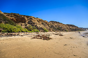 Paul Velgos - Crystal Cove Cliffs in...