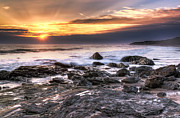 Crystal Metal Prints - Crystal Cove State Park Metal Print by Eddie Yerkish