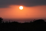 Polly Villatuya - Crystal Cove Sunset