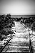 State Flowers Prints - Crystal Cove Wooden Walkway in Black and White Print by Paul Velgos