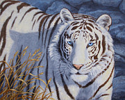 White Tiger Framed Prints - Crystal Eyes Framed Print by Crista Forest