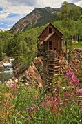 Old Mills Photo Prints - Crystal Mill Wildflowers Print by Adam Jewell