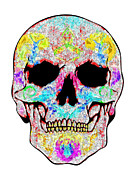 Scull Framed Prints Prints - Crystal Scull Print by Mauro Celotti