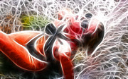 Crystal Sling 2 Fractal Print by Gary Gingrich Galleries