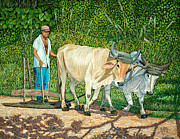 Farm Team Paintings - Cuban Countryman by Manuel Lopez