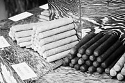 Cuban Prints - Cuban Style Cigars On Sale In A Shop In Key West Florida Usa Print by Joe Fox
