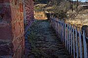 Old House Photographs Prints - Cuervo and the Garden Path Print by Lee Craig