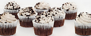 Sugar Photo Prints - Cupcake Cuties Panorama - Cupcake - Bakery - Sweets - Chocolate Cake - Brown Print by Andee Photography