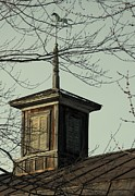 Debbie Finley Metal Prints - Cupola Through The Trees Metal Print by Debbie Finley