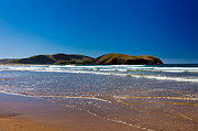 Curio Art - Curio Bay on South Coast of New Zealand South Island by Stephan Pietzko