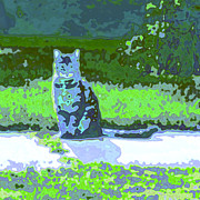 Composer Digital Art - Curiosity And The Cat by Tom Druin