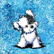 Kim Mixed Media Framed Prints - Curious Havanese Framed Print by Kim Niles