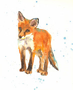 Curious Kit Print by Alison Fennell