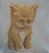 Cute Kitten Originals - Curious Kitten 2 by Nicole Shaw
