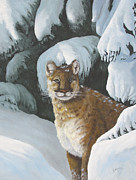 Snow Scene Painting Originals - Curious Watcher - Cougar by Johanna Lerwick