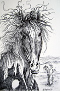 Wild Horse Drawings - Curly beauty by Roberto Gagliardi