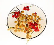 Vitaliy Gladkiy - Currants on a plate