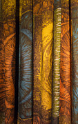 Golden Brown Prints - Curtain with beautiful yellow orange golden brown and blue colors Print by Matthias Hauser