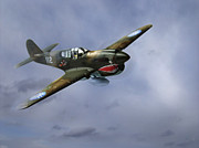 World War 2 Aviation Prints - Curtiss P-40 Warhawk Print by Diane Diederich