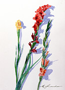 Gladiolas Painting Prints - Cut Gladiols Print by Mark Lunde