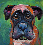 Caricature Posters - Cute Boxer puppy dog with big eyes painting Poster by Svetlana Novikova