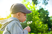 Enjoyment Art - Cute child blowing dandelion by Michal Bednarek