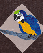 Macaw Art Paintings - Cute Little Macaw  by Melissa Vijay Bharwani