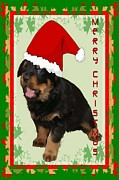 Christmas Dogs Digital Art Prints - Cute Merry Christmas Puppy In Santa Hat  Print by Tracey Harrington-Simpson