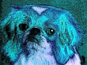 Puppies Digital Art - Cuteness by Kathy Budd