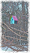 Cutest Little Birdhouse Print by Donna Brown